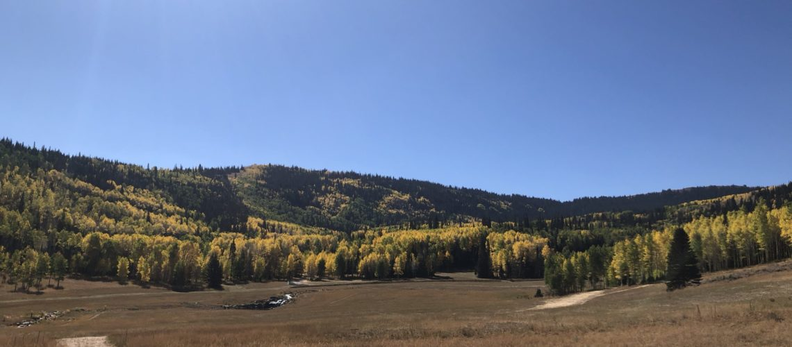 Colony at White Pine Canyon I Park City Real Estate